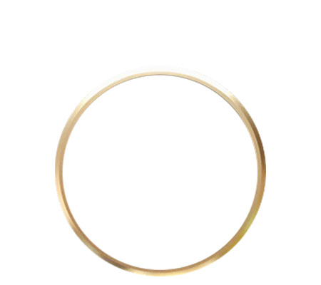 Ricoh Lens Ring Gold