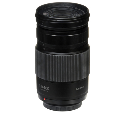 Panasonic Lumix G Vario 100-300mm f/4-5.6 II POWER O.I.S