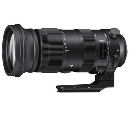 Sigma for Nikon 60-600mm F/4.5-6.3 DG OS HSM Sport Lens
