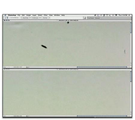 Package 2 - Sensor Cleaning for DSLR Camera