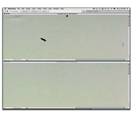 Package2 - Sensor Cleaning for DSLR Camera