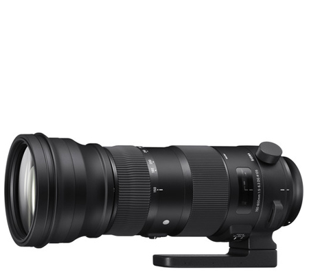 Sigma for Nikon 150-600mm f/5-6.3 DG OS HSM Sports (S)