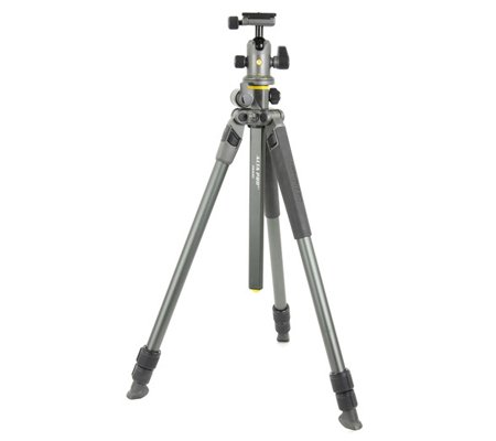 Vanguard Alta Pro 2+ 263AB100 Aluminum Alloy Tripod Kit with Alta BH-100 Ball Head