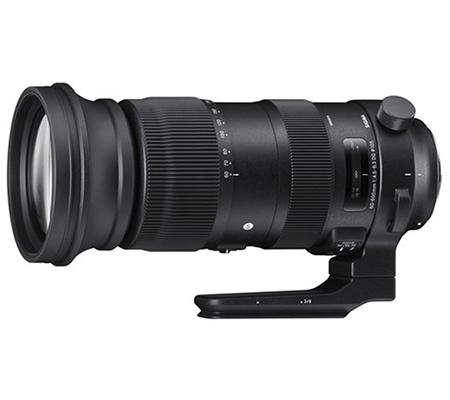 Sigma for Nikon 60-600mm F/4.5-6.3 DG OS HSM Sport Lens